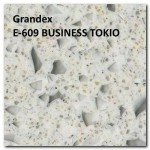 Grandex E-609 BUSINESS TOKIO