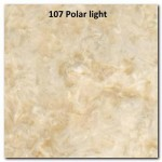 107 POLAR LIGHT