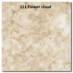111 FLOWER CLOUD